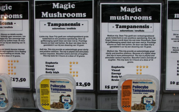 Magic mushroom varietals being sold legally in a Dutch 'smart shop'
