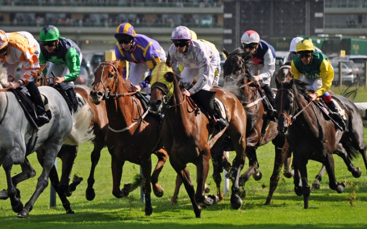The runners and riders get underway at Ascot [Flickr; Alun John]