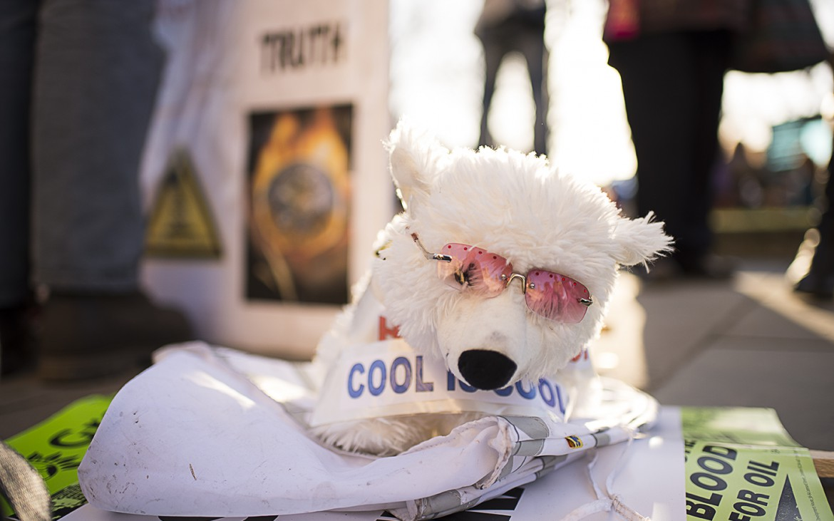 Fluffy polar bear to remind people how rising temperatures are affecting the Arctic. [Elena McDonough]