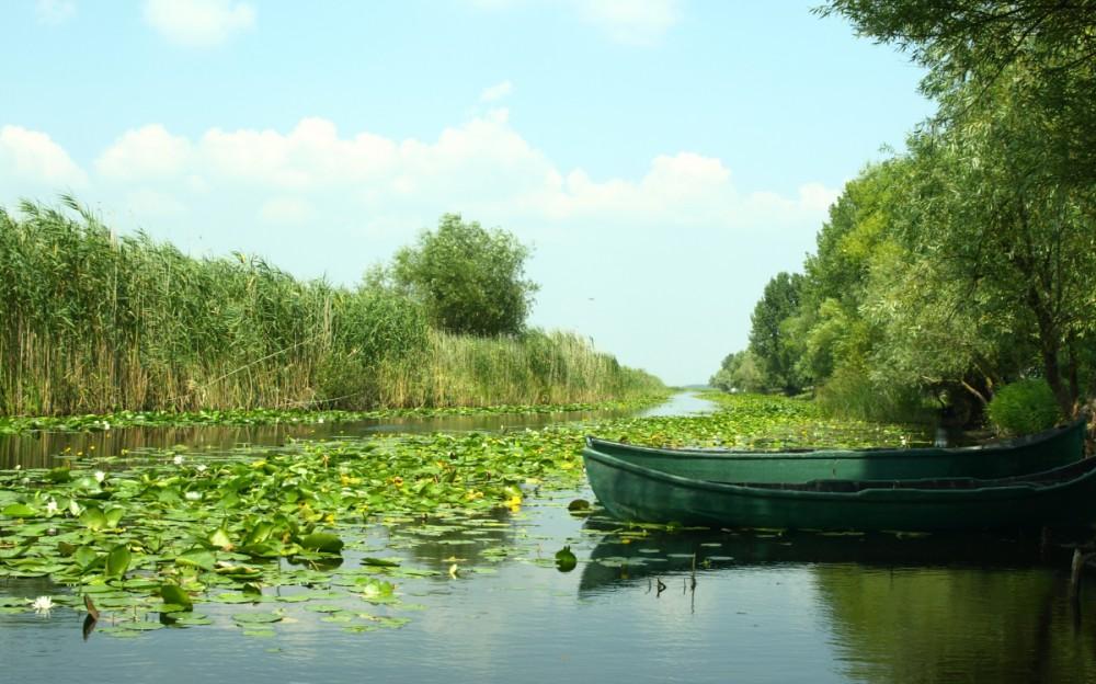 Letea Canal