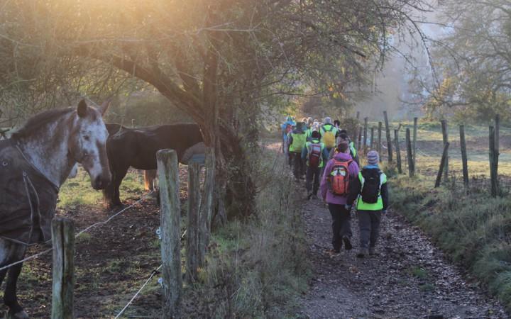 Pilgrims walking through countryside