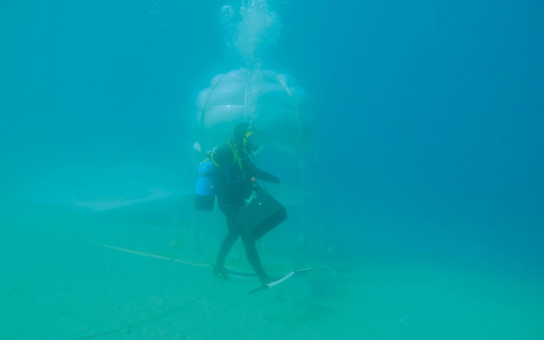 underwater farming 3