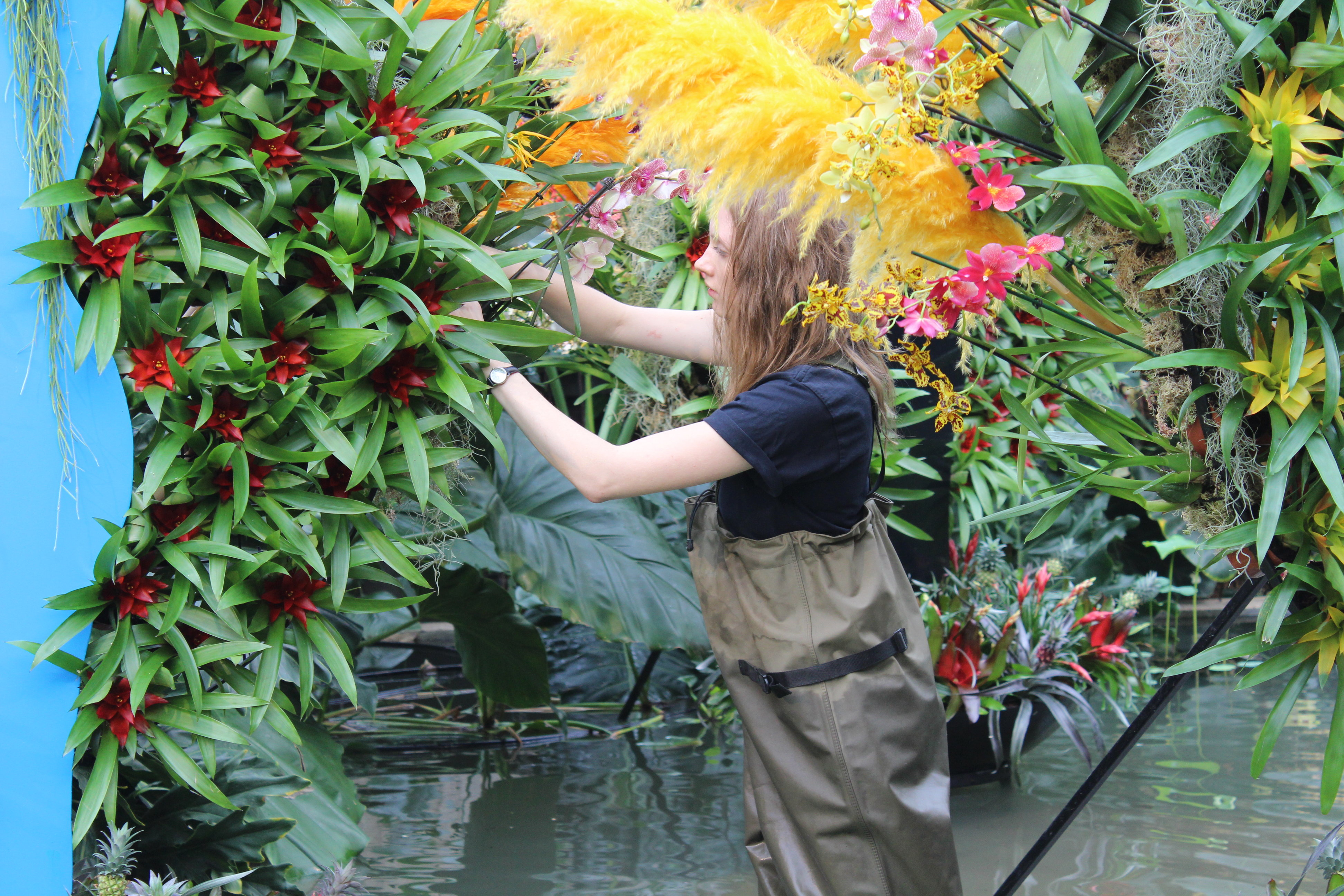 Kew Horticulture Staff Jessica Snowball making final touches for opening weekend