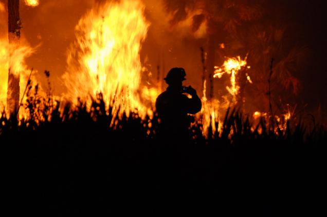 Fire fighters in an bushfire