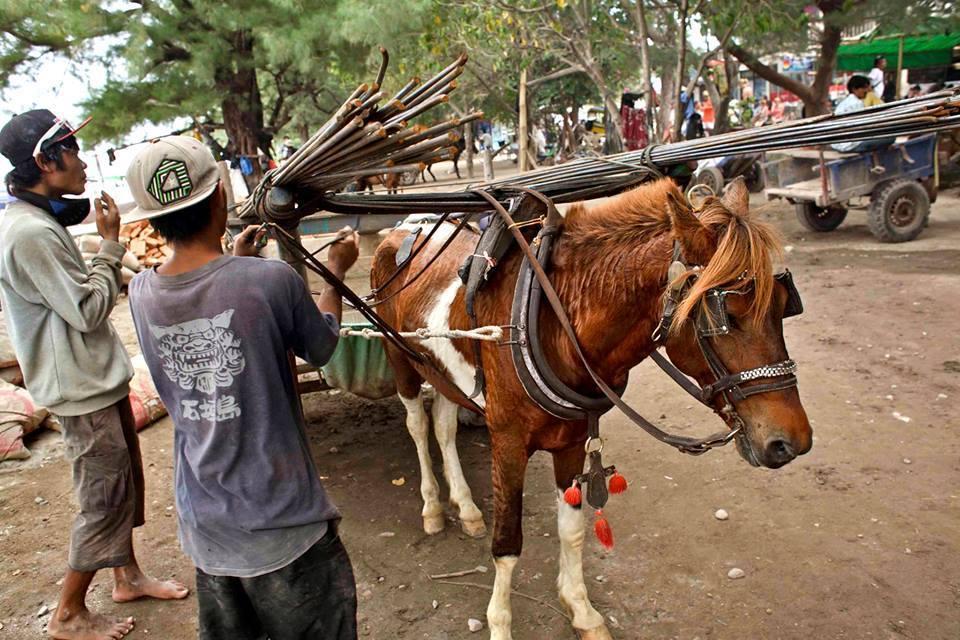 A horse pulling a cart full of wood