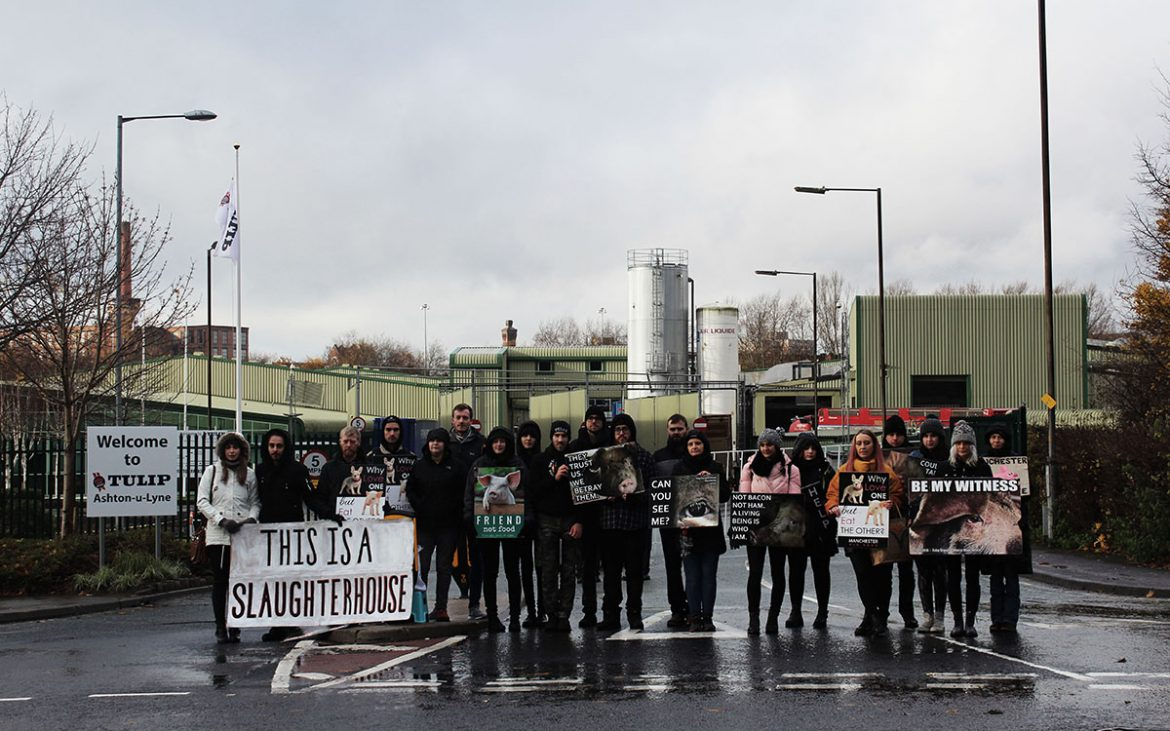 Activists standing outside slaughterhouse