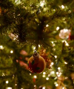 christmas, tree, christmas tree, festive , decoration