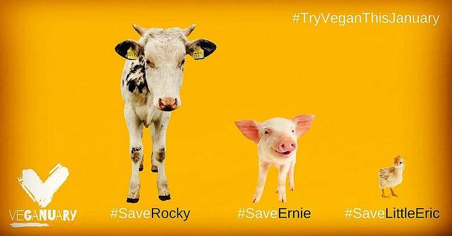 Veganuary poster