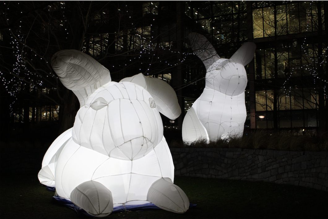 Intrude by Amanda Parer