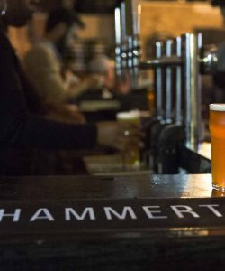 A fresh pint at House of Hammerton