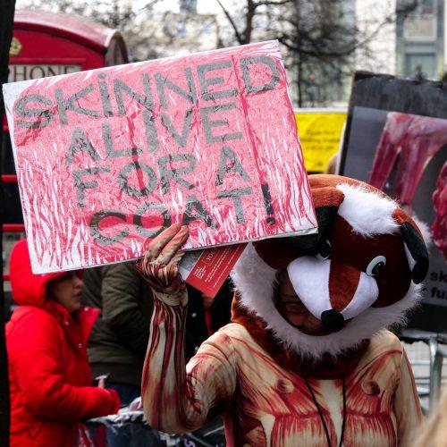 LFW fur protest