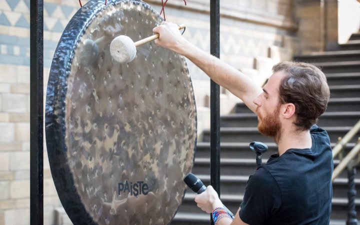 Gong meditation at The Natural History Museum