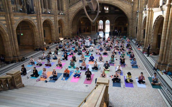 Yoga at The Natural History Museum