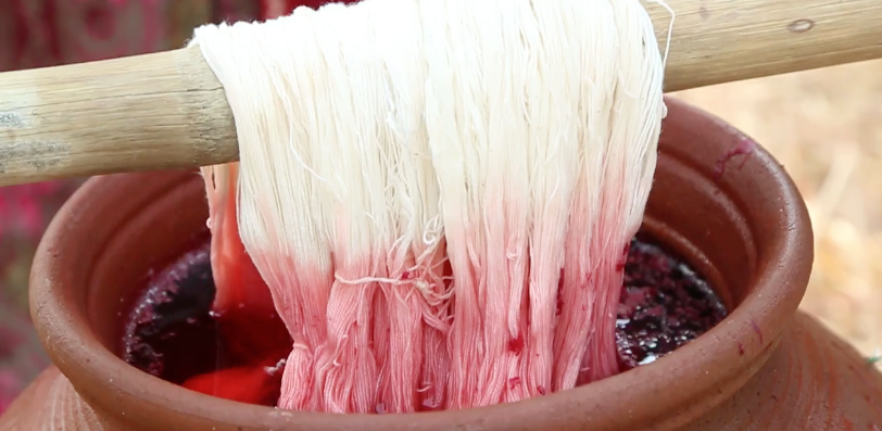 yarn going into a pot of pink natural dye