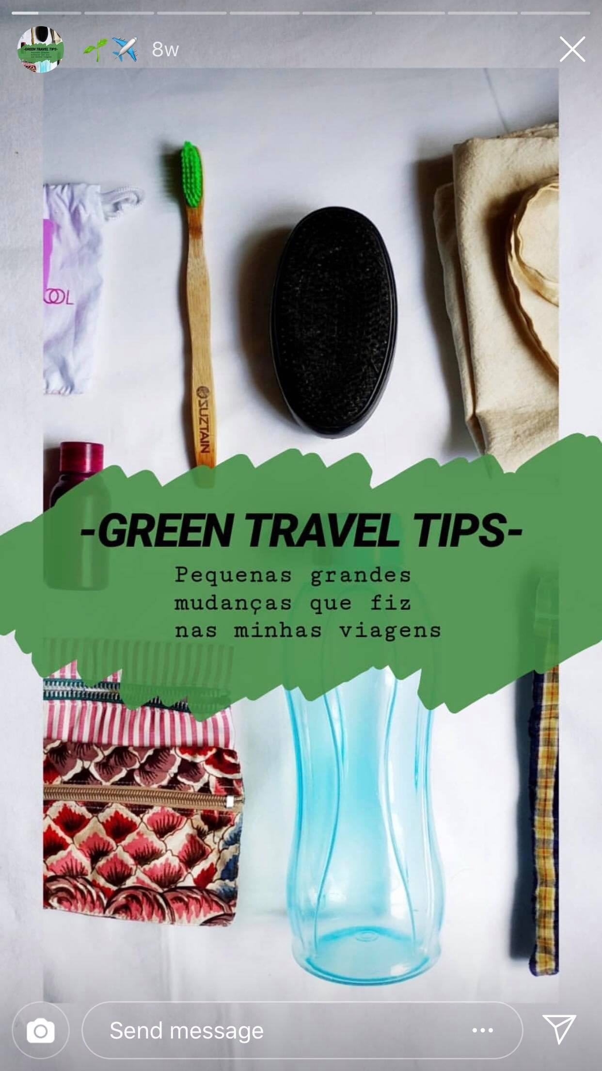 Instagram post by Patricia Nogueira on how to travel green