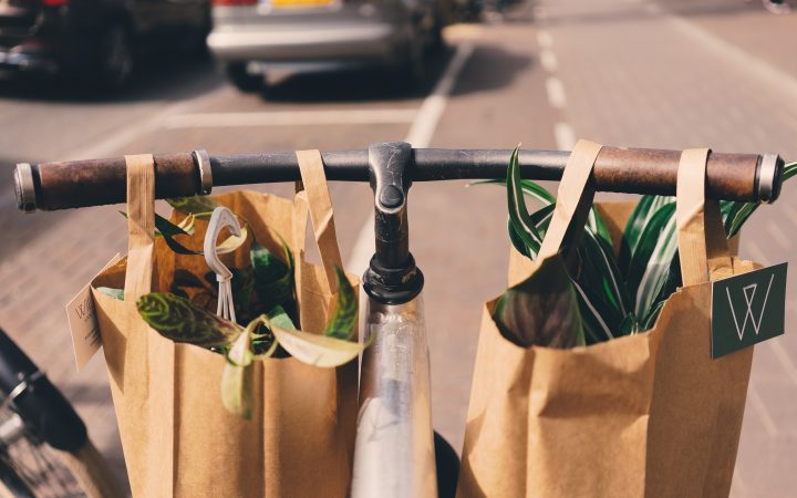 Brown paper bags filled with vegetables on a bicycle