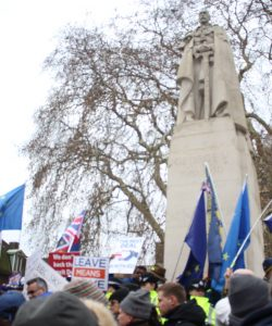 Image of protesters in front of the George V statue, January 29th 2019. [Hannah Dardis]
