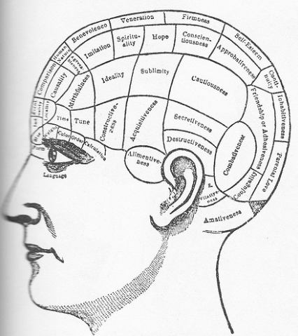 The illustration is a breakdown of the brains memory space. It shows a profile sketch of a human head.