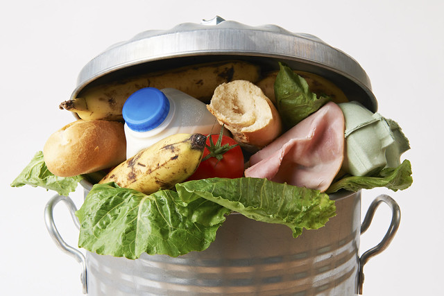 food in a rubbish bin