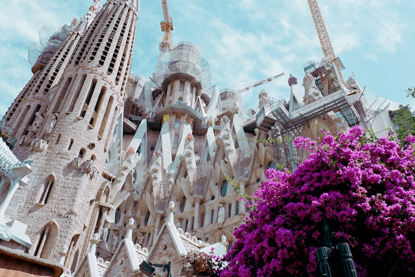 the sagrada familia with pink flowers