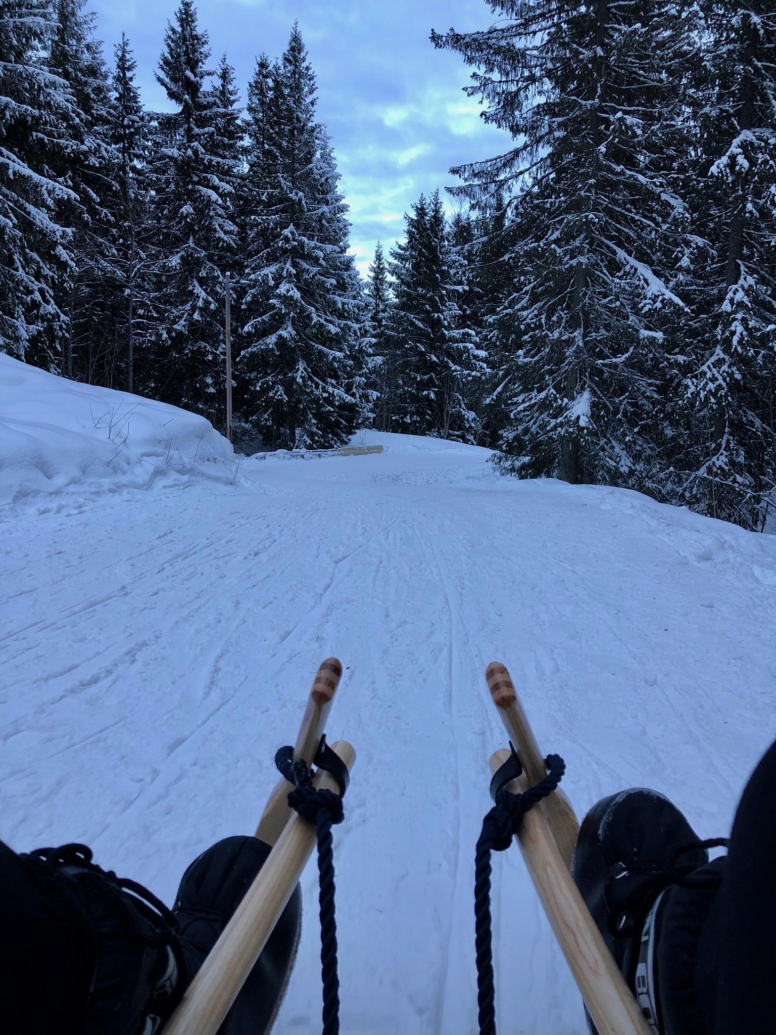 Sledding in Oslo