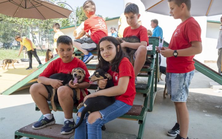 Several children are sitting and cuddling with small dogs on their arms.