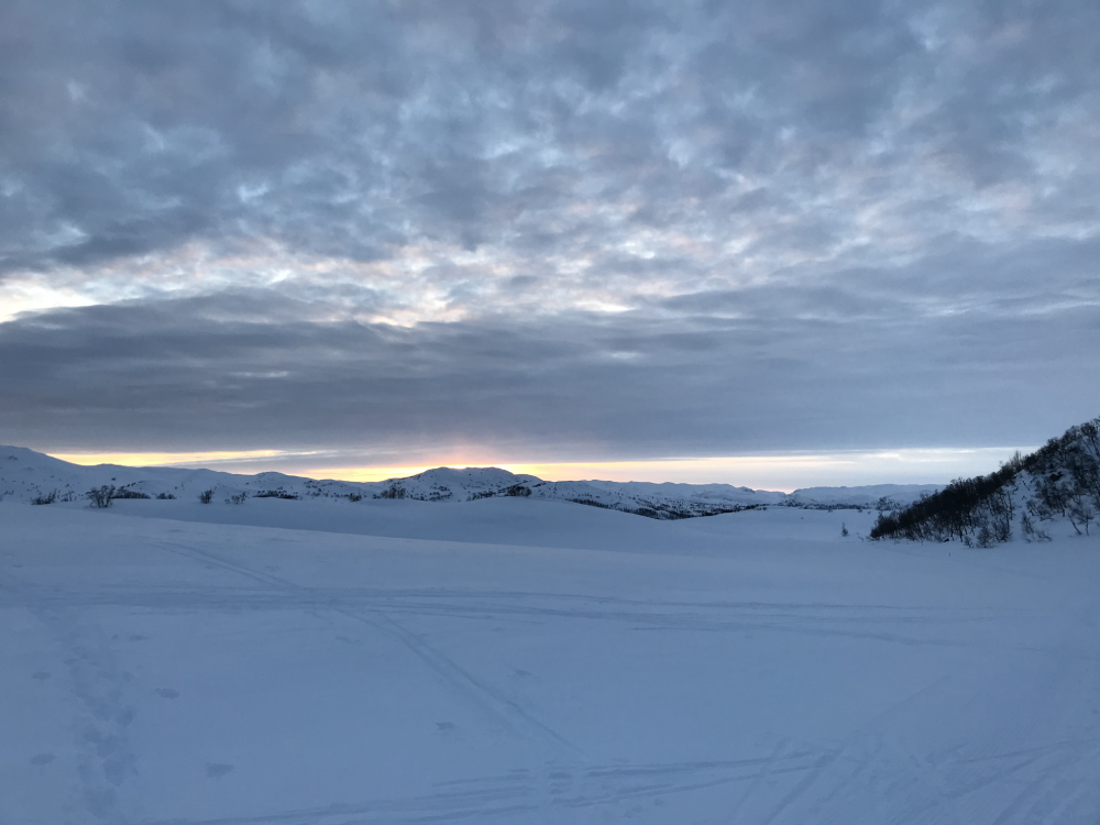 The Norwegian Hardangervidda, Europe's largest plateau blanketed by snow