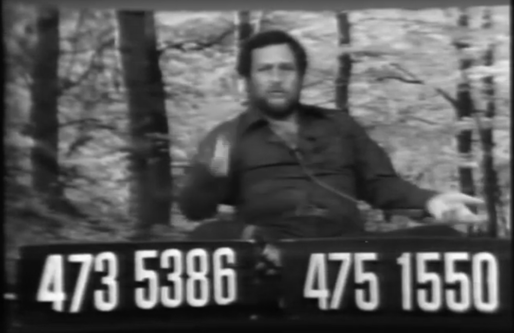 A still from The Grube Tube. Steve Gruberg sits behind a desk displaying two phone numbers. Behind him is a crudely green-screened image of a forest scene.