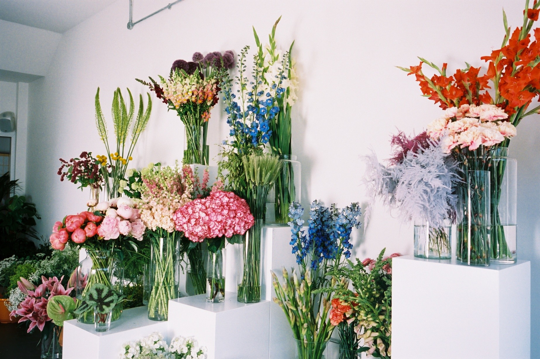 pick n mix inside SAGE a wide variety of flowers in vases to choose from