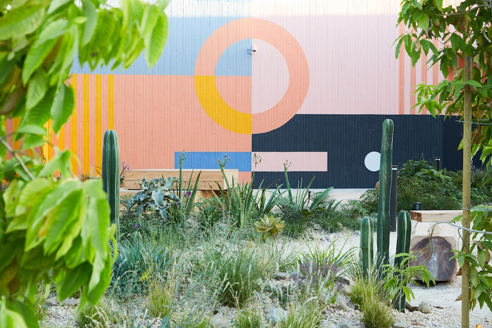 An energetic planting scheme by Terremoto at Platform Park in Culver City. Pictured behind wild green grasses is a multicoloured mural by Block Shop Textiles