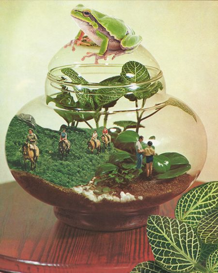 Collage created by Karen Lynch. It features an image of a glass vase with miniature people inside and a frog on top.
