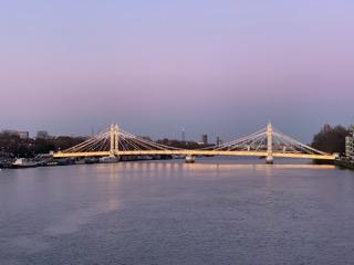 Albert Bridge on one of our evening walks