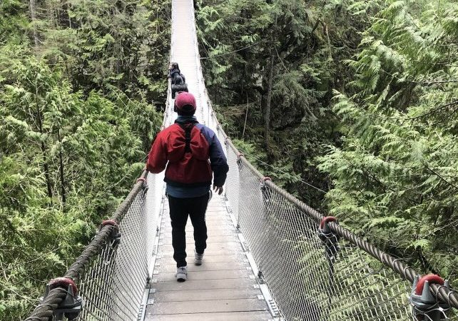 Someone wearing a red coat and black trousers with their back to the camera, waling over a suspension bridge surrounded by greenery.