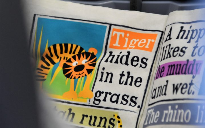 """A paper with an illustration of a tiger with text next to it reading """"Tiger hides in the grass"""""""