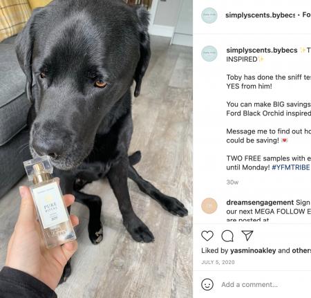Becca's dog Toby smelling the bottle
